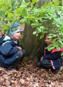 Abenteuer Wald!
