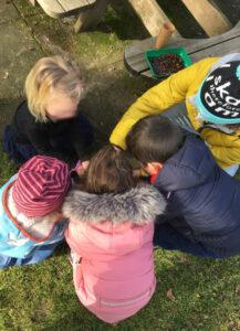 Read more about the article Kastanienplanzen im Kindergarten